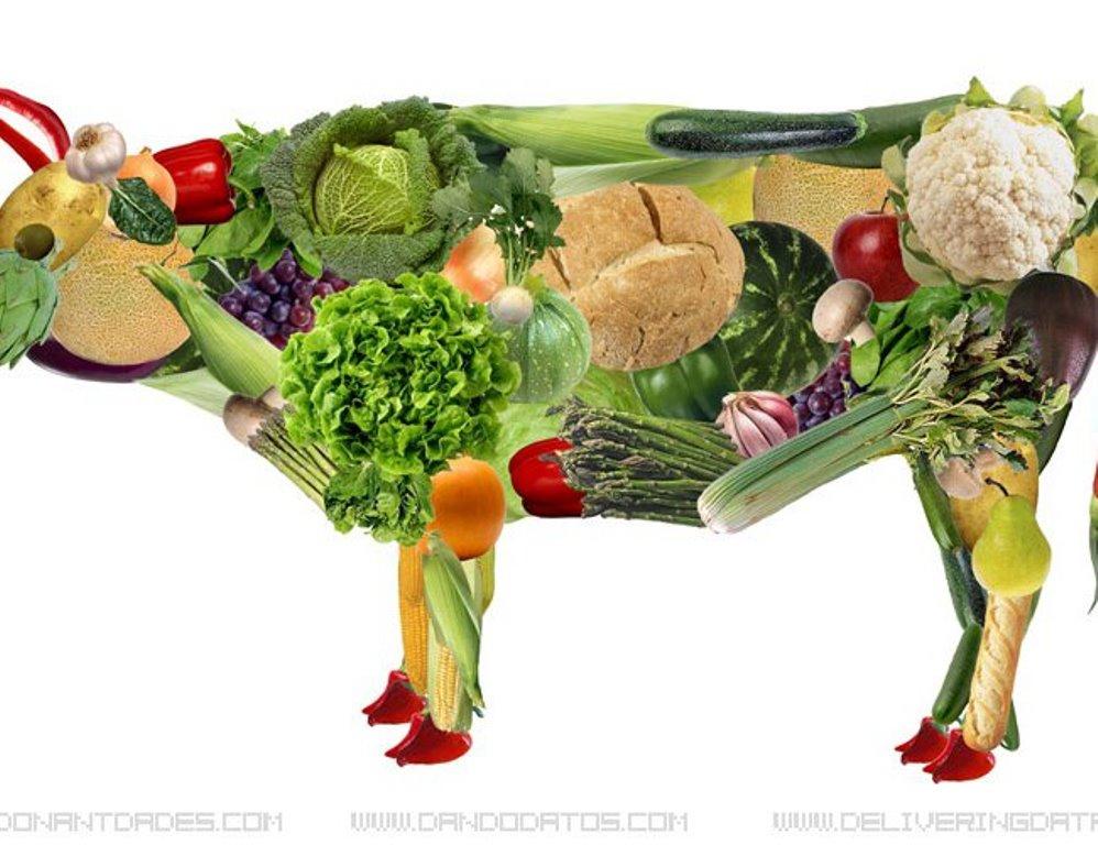 El estudio que dice que los vegetarianos tienen un riesgo mayor de ictus