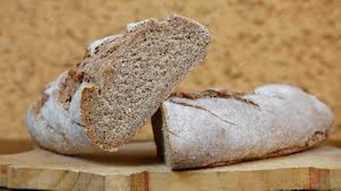 ¿Mejor pan de masa madre o integral?