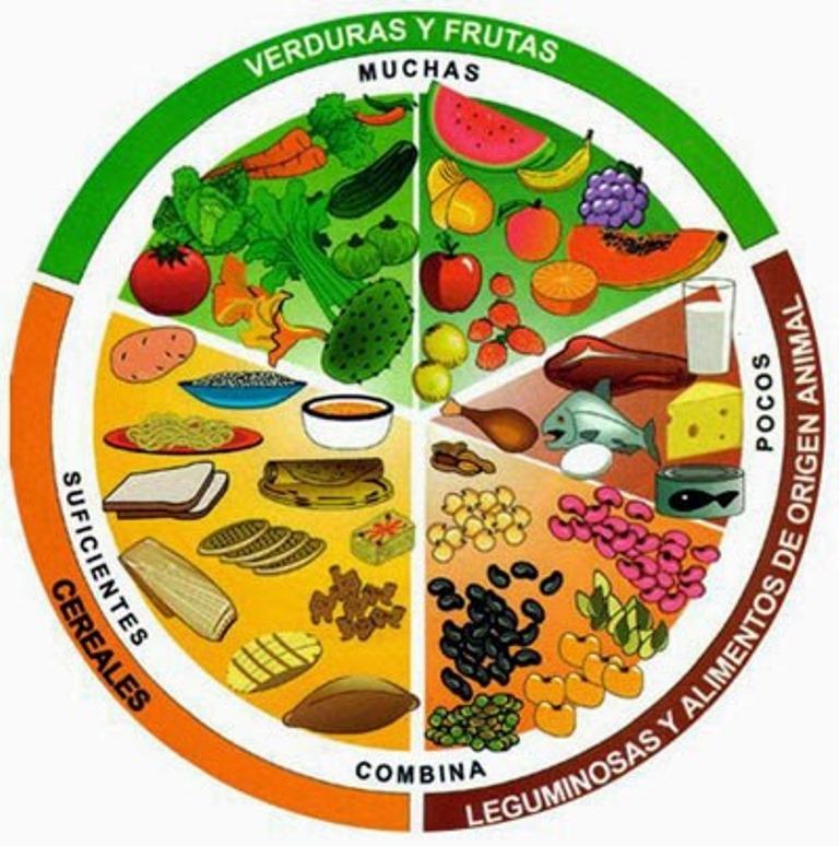 ¿Funcionan las dietas hipocalóricas?