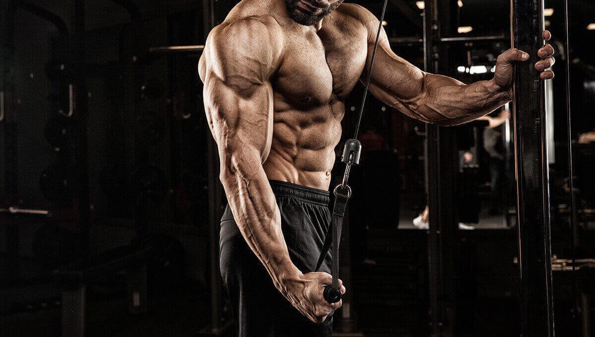Cómo ganar fuerza muscular con pesas sin un crecimiento importante del músculo