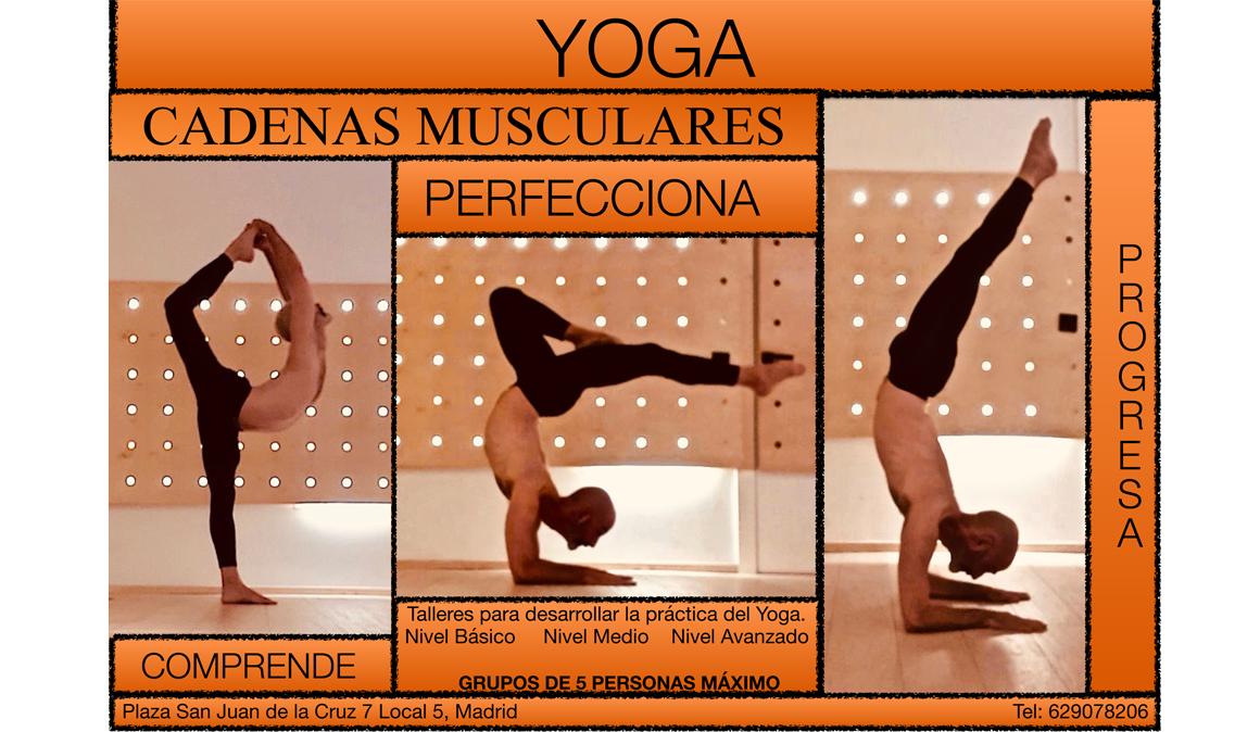 Taller: Yoga y Cadenas Musculares, Dominio del Movimiento con Edel Fernández