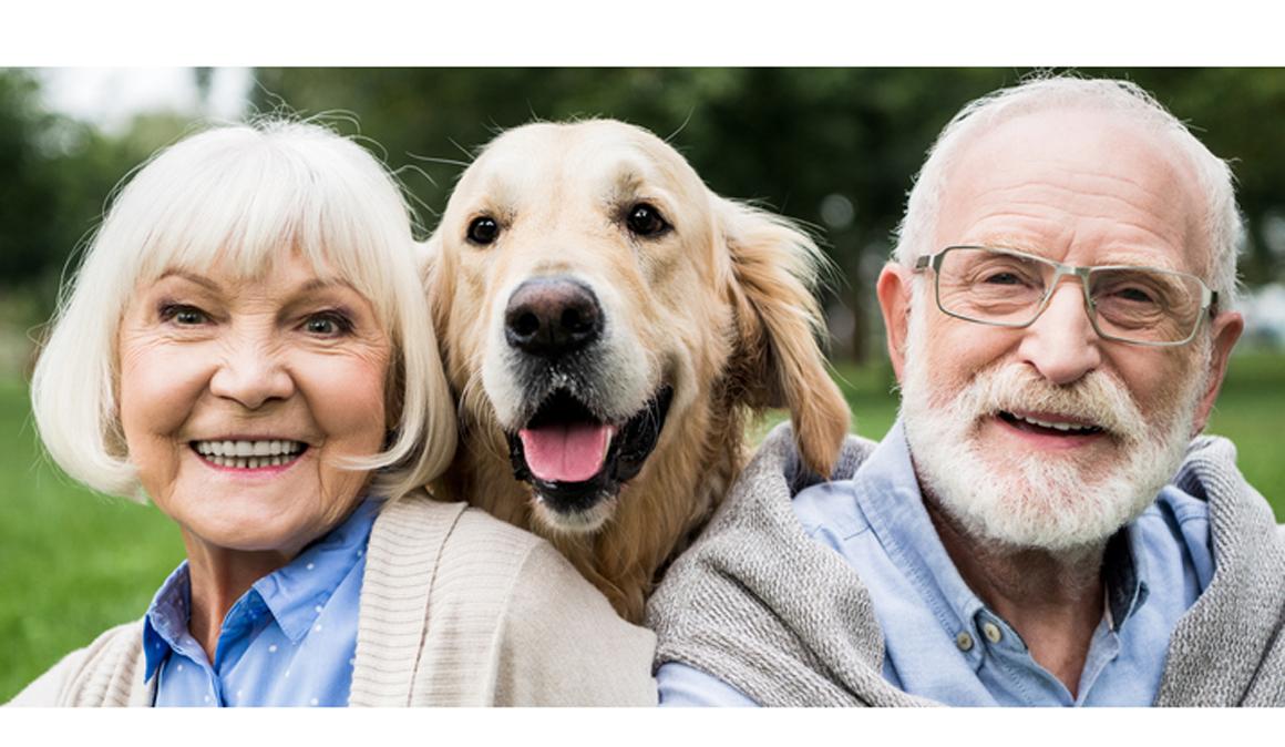Las mascotas ayudan a mejorar la salud mental