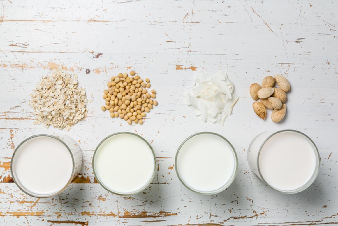 Elegir una leche vegetal