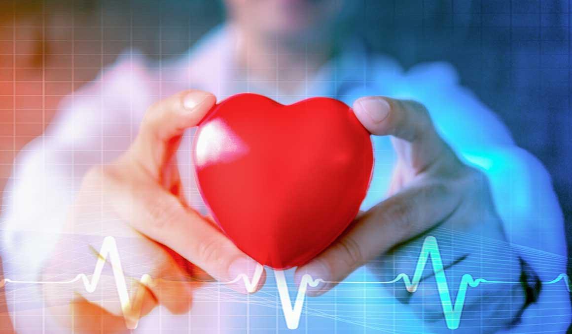 ¿Es mejor tener un corazón fino o grueso?