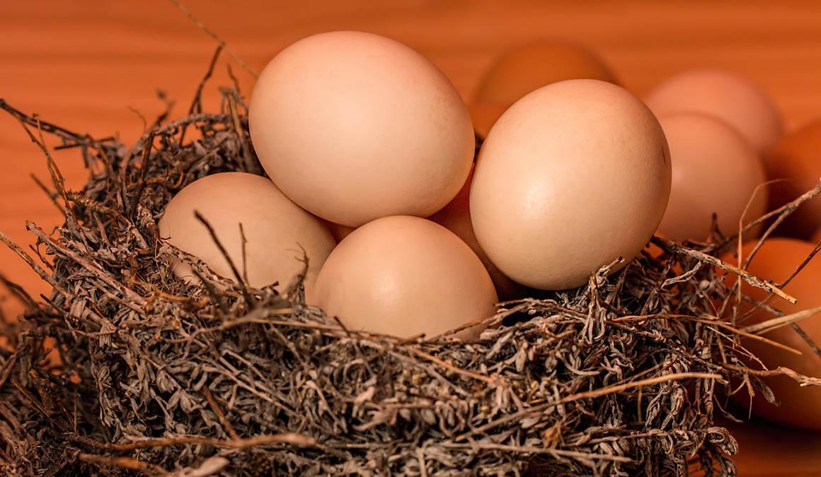 Las 10 claves para no correr riesgos con los huevos
