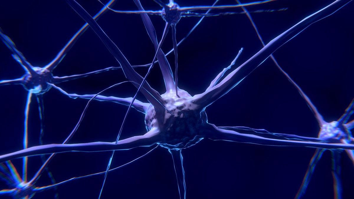 La mielitis transversa que ha paralizado la vacuna de Oxford