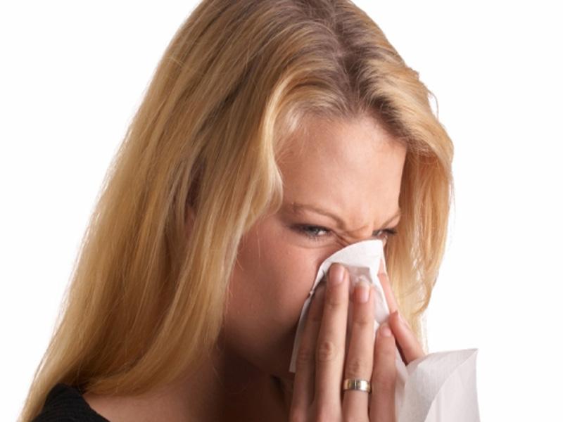 Alimentos que te ayudan a evitar las alergias