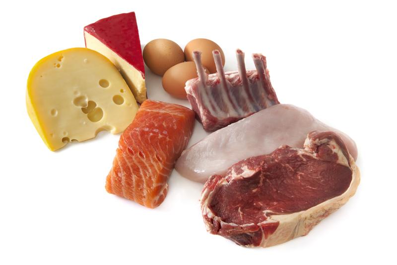 Material de construcción: las proteínas