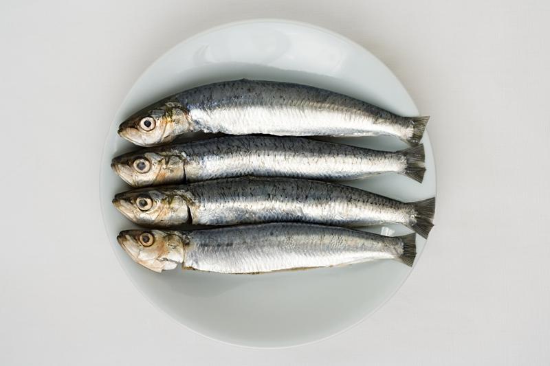 ¿Por qué está de moda el pescado?