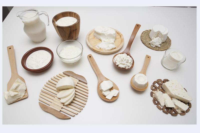 El queso y sus propiedades