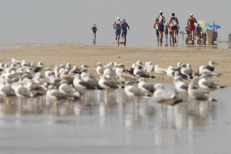 Pon a prueba tu resistencia: apúntate al auténtico Desafío Doñana