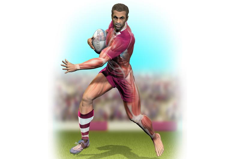 Preparación física para rugby