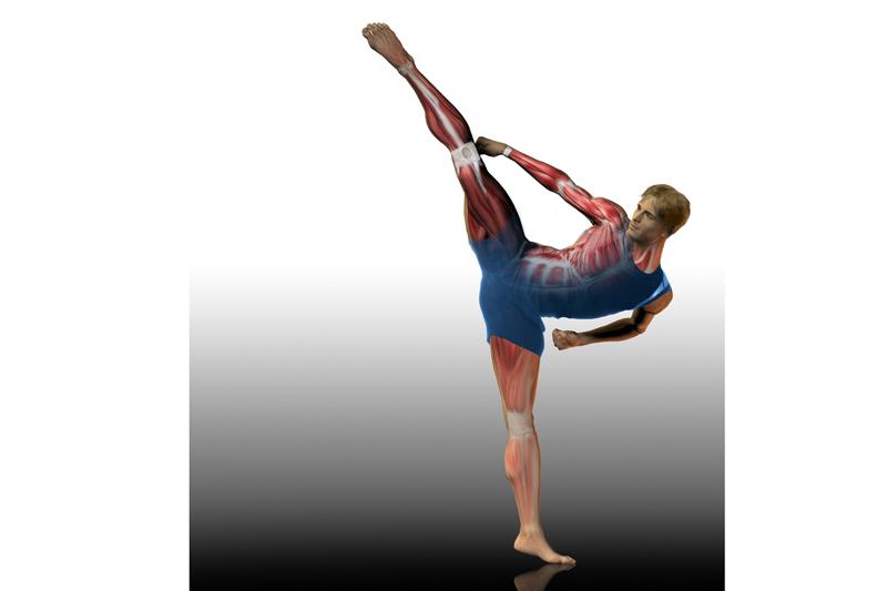 Preparacion física específica: Artes Marciales