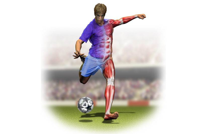 Preparacion física específica: Fútbol