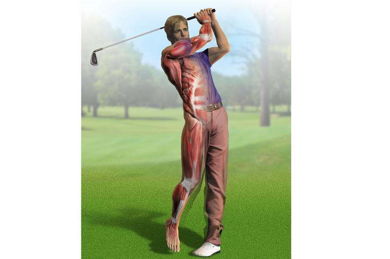 Preparacion física específica: Golf