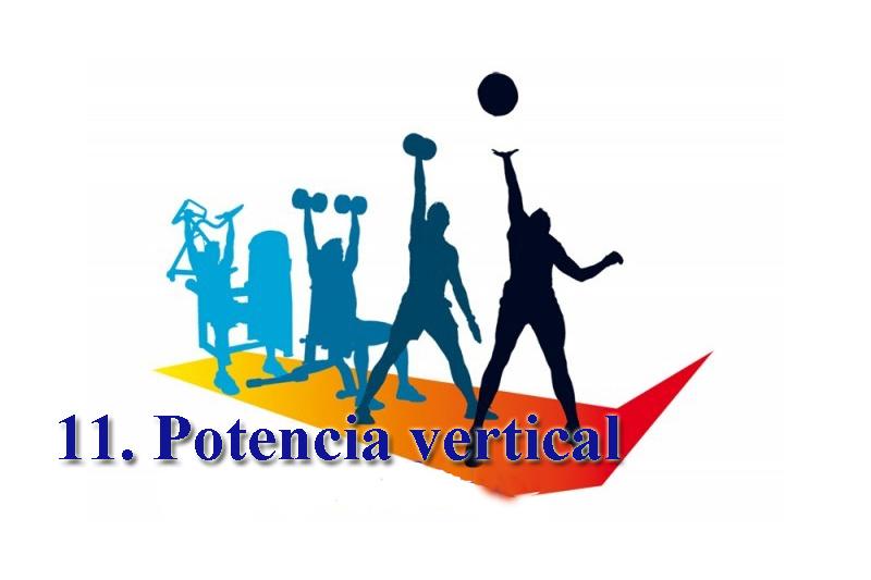 Progresiones funcionales 11: Potencia vertical