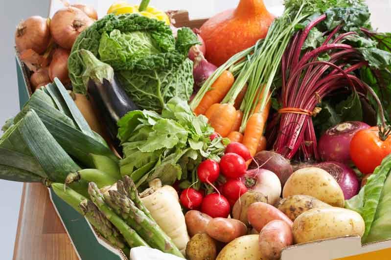 Apúntate a la nutrición antioxidante