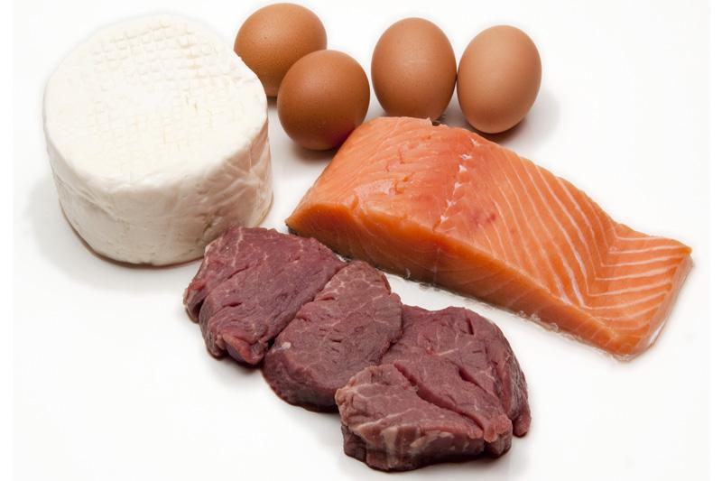 Todo sobre las proteínas