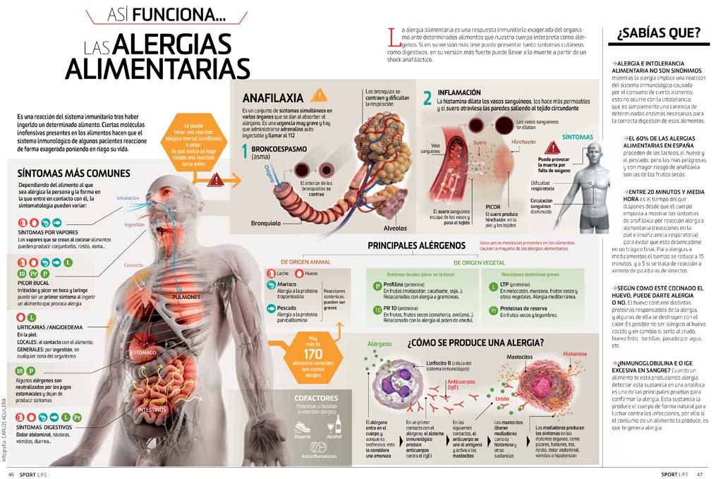 Así funcionan la alergias alimentarias