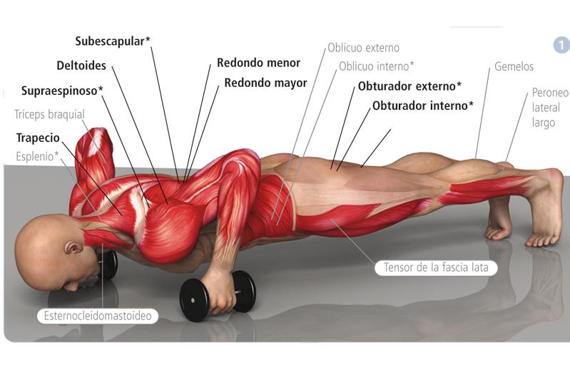 Fotos | Revista de deportes, salud y fitness online | Sportlife