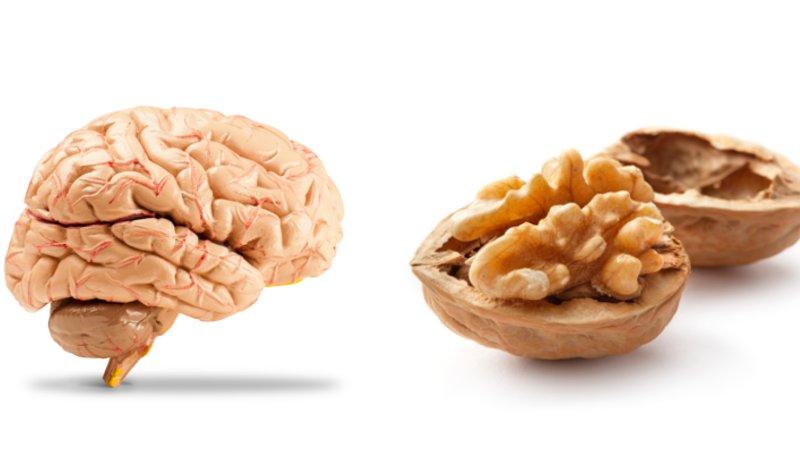 Alimentos que se parecen a partes del cuerpo nutrici n - Alimentos que contienen silicio ...
