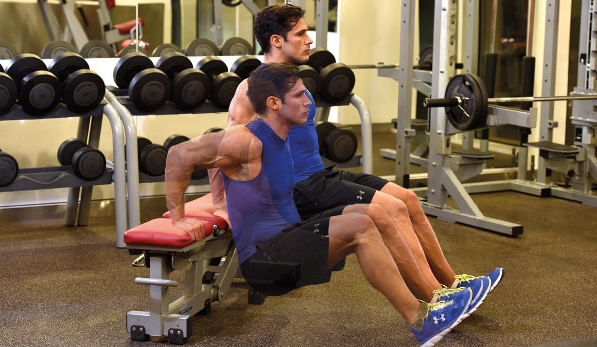Image result for fondos para triceps