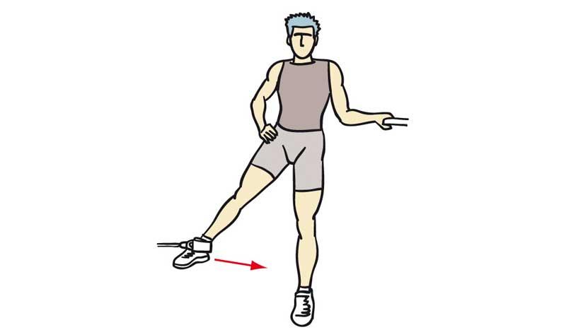 La pierna aductores de musculos
