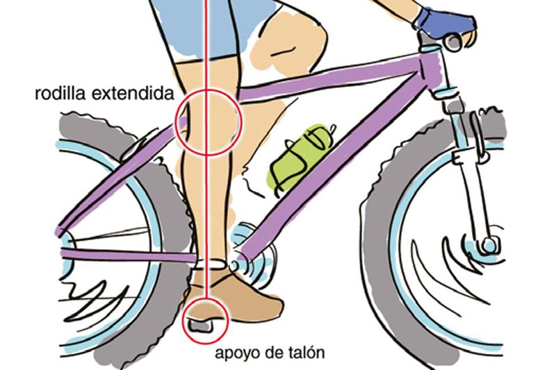 Aprende a elegir tu talla | Ciclismo | Sportlife